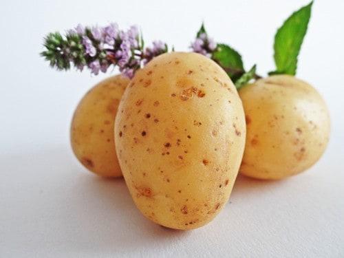 Kartoffeln sind gesund
